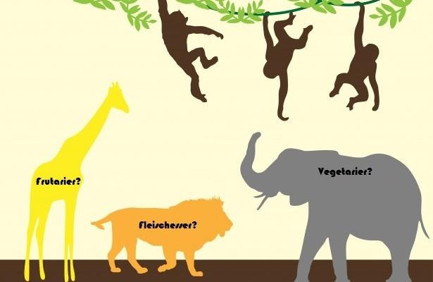 jungle-animals-colorful-art